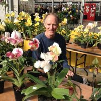 Showing your Orchids